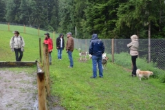 HundeMenschTreffen-2014-15