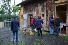 HundeMenschTreffen-2014-9